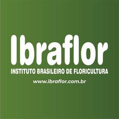 Ibraflor.jpg