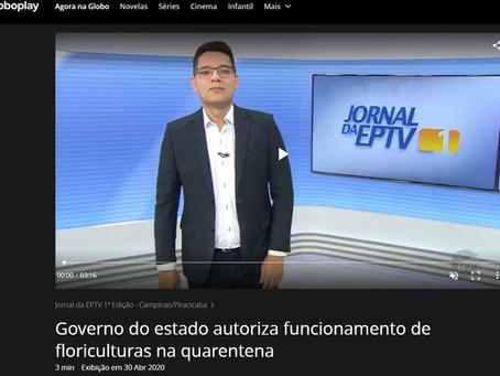 Governo do Estado autoriza funcionamento de floriculturas na quarentena
