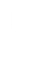 VBS Standard Logo.png