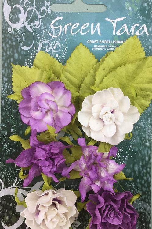 Green Tara Tea Roses - Lavender