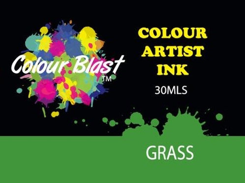 Colour Blast by Bee Arty Artist Ink - Grass