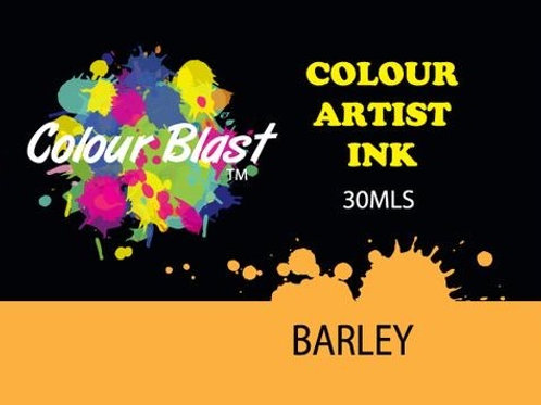 Colour Blast by Bee Arty Artist Ink - Barley