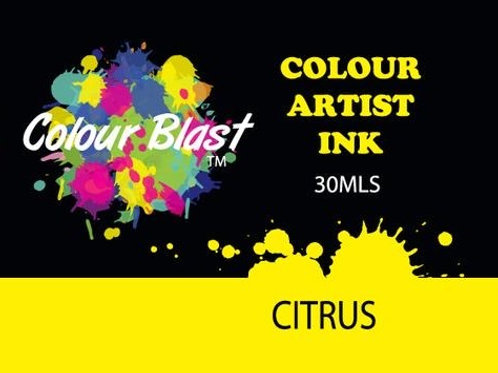 Colour Blast by Bee Arty Artist Ink - Citrus