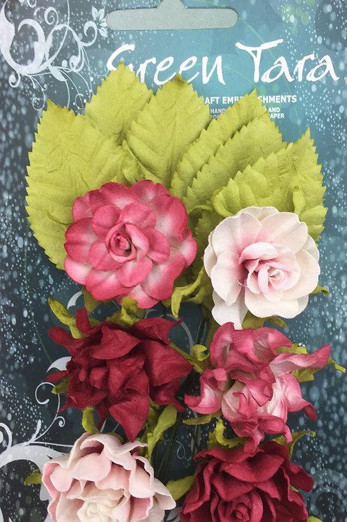 Green Tara Tea Roses - Soft Red