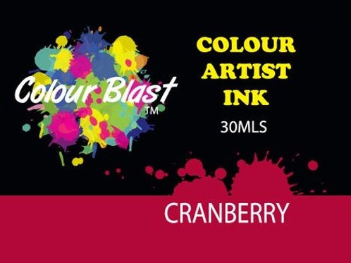 Colour Blast by Bee Arty Artist Ink - Cranberry