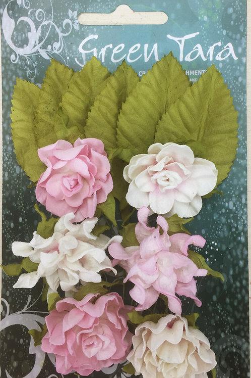 Green Tara Tea Roses - Pale Pink