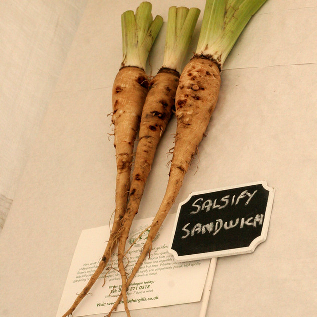 any other vegetable winner