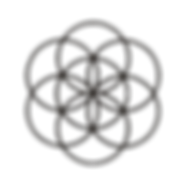 Seed of Life Bold PNG.png