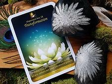 Chrysanthemum stone.jpg