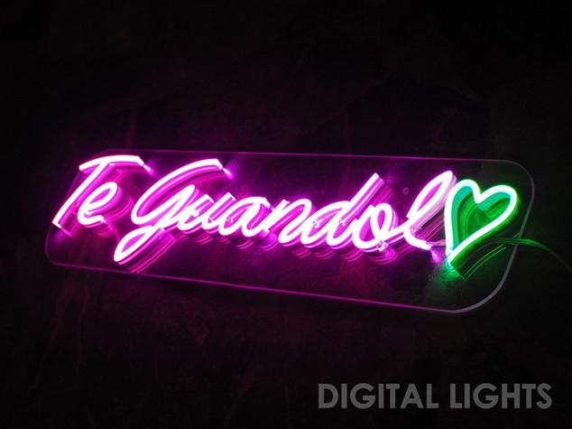 guandolo1.jpg