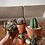 Thumbnail: עציץ טרקוטה קלאסי, עם צמח לבחירה