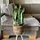 Thumbnail: קוקטייל צמחים מיוחד, בסל קש כהה