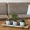 Thumbnail: עציץ בטון נוצות, עם צמח לבחירה