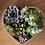 Thumbnail: קוקטייל האהבה