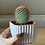 Thumbnail: ריבועי בטון, 4 צבעים עם צמח לבחירה.