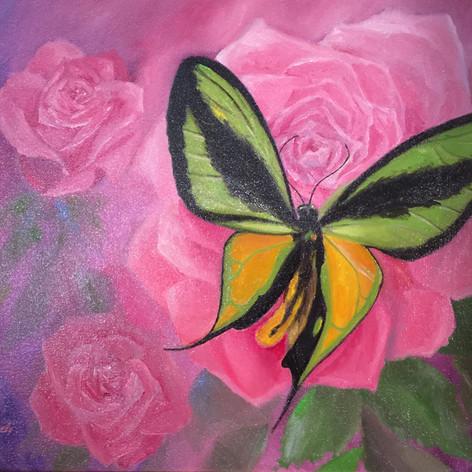 Appreciating A Rose, Oil on Canvas, 11 x 14