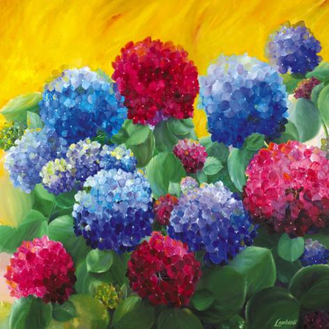 Sunny Hydrangeas, Oil on Canvas, 48 x 48