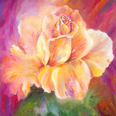 Rosa Del Sol, Oil on Canvas, 14 x 18