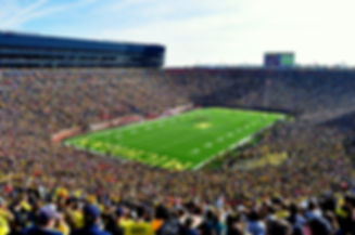 University of Michigan, the Big House