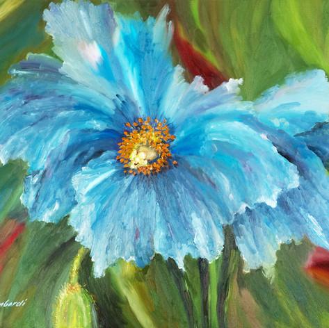 Blue Fiesta, Oil on Canvas, 20 x 24