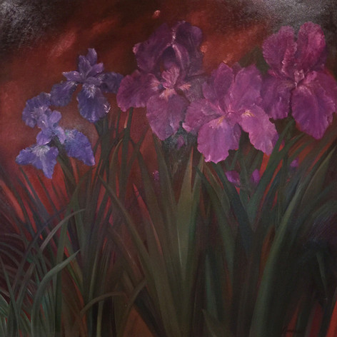 Moody Iris, Oil on Canvas, 48 x 48