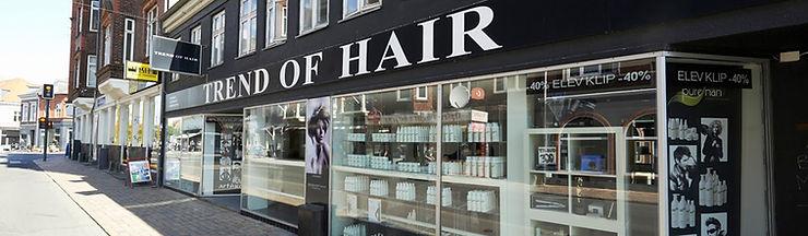 Trend of hair vesterbro.jpg