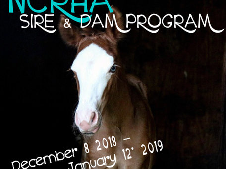 2019 NCRHA Stallion Service Auction