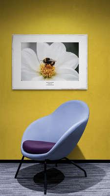 Melinas Bee