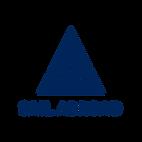 Sail Abroad Logo