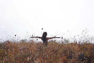 Laurel Yoga in Nature