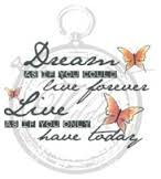 Vilda - Dream As If You Could Live Forever