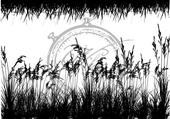 Vilda - Grass Kit