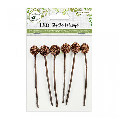 Little Birdie - Allium Brown