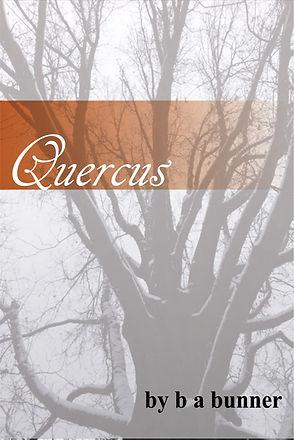 Quercus cover.jpg