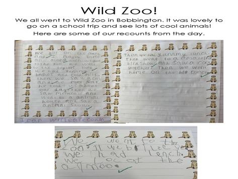 Wild Zoo!