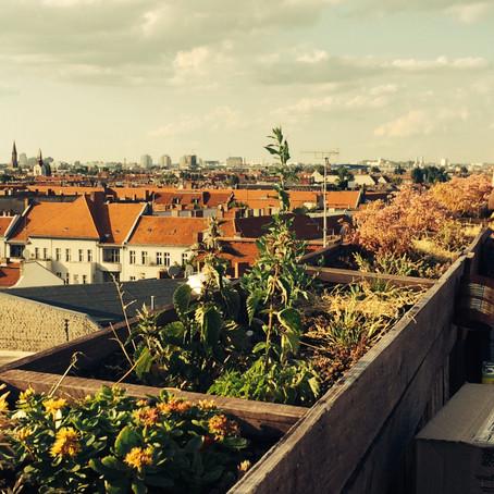 Berliner Nomanden: Greift nach den Sternen