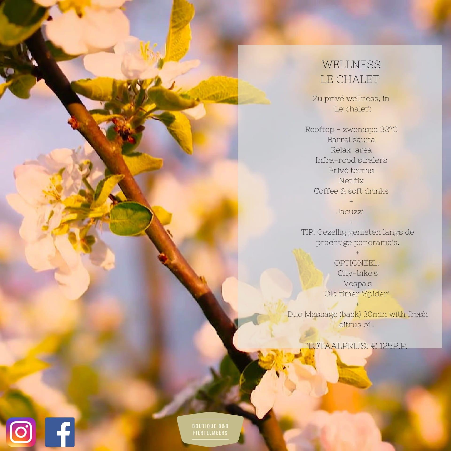 Spring Arrangement Le Chalet(massage)