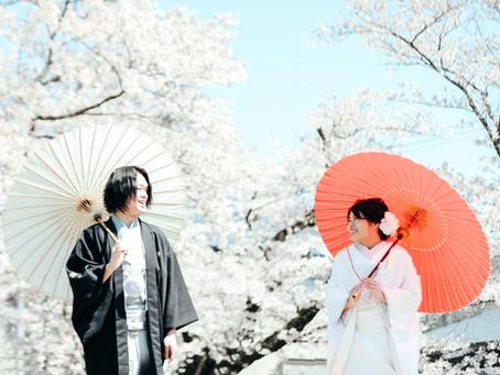 念願の桜で前撮り