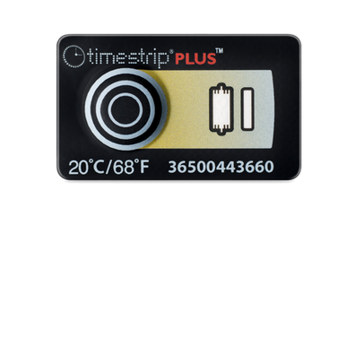 08-TIMESTRIP-20C.png