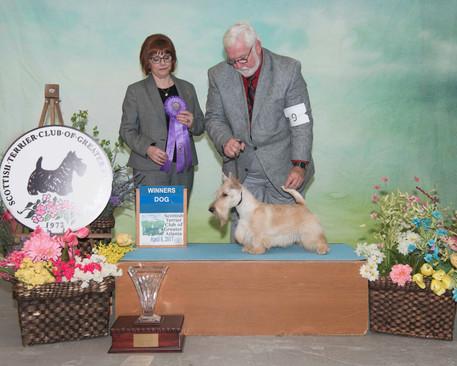 Winners Dog:  Ruffton's Pale Rider