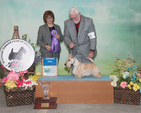 Winners Dog:  Ruffton's Pale Rider