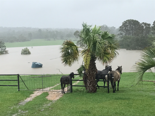 The October 2017 Floods