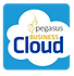 Pegasus Business Cloud logo
