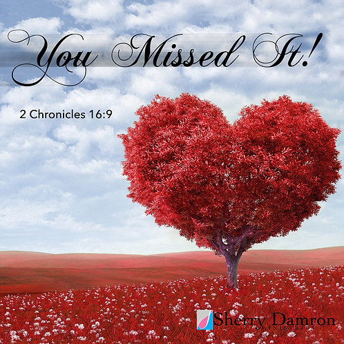 You Missed It! (CD)