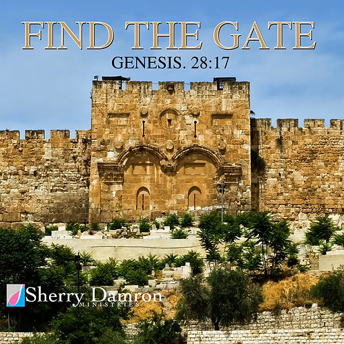"""Find The Gate"" (CD)"