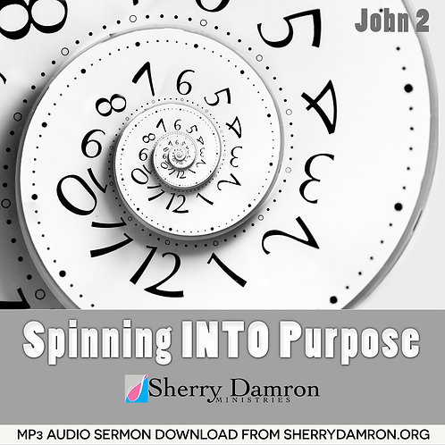 Spinning INTO Purpose (MP3 SERMON DOWNLOAD)