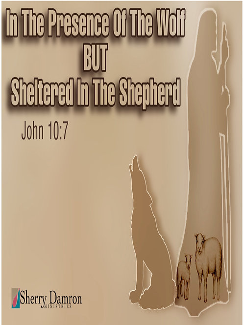 In The Presence Of The Wolf BUT Sheltered In The Sheep (DVD)