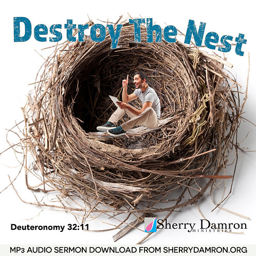 Destroy The Nest (MP3 SERMON DOWNLOAD)