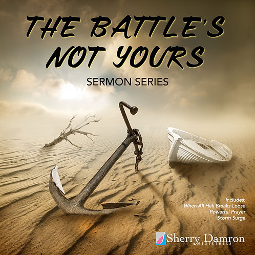 The Battles Not Yours Series (CD)