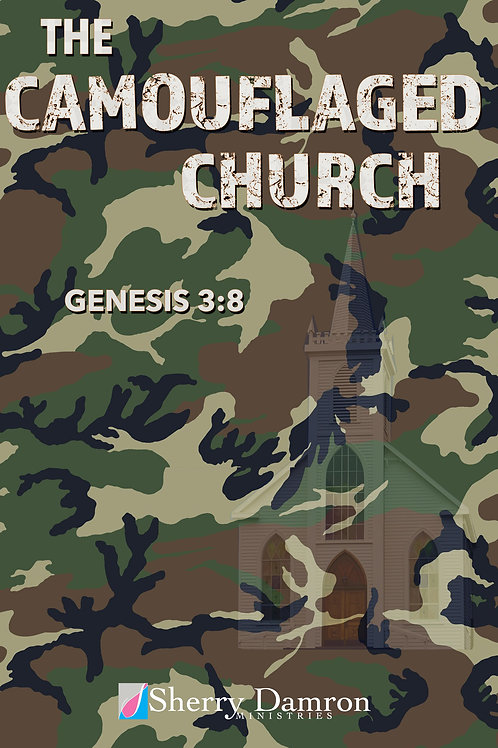 """The Camouflaged Church"" (DVD)"